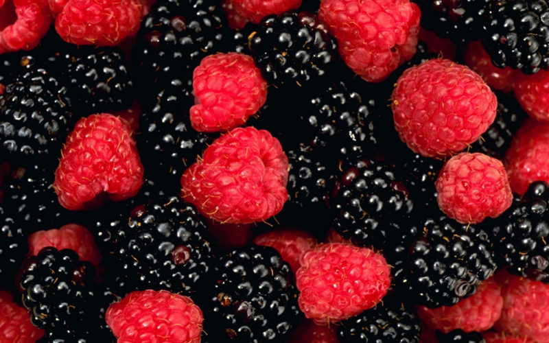 10 Best Berry Wallpaper FULL HD 1920×1080 For PC Background 2020 free download berry wallpaper 6 3840 x 2400 stmed 800x500
