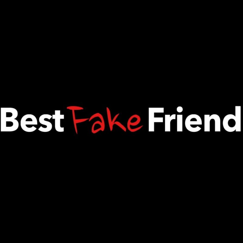 10 Top Images About Fake Friends FULL HD 1080p For PC Background 2020 free download best fake friends trailer youtube 800x800