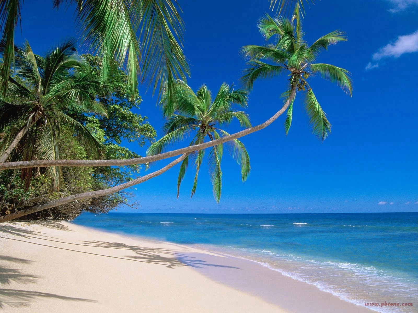 best hawaii beaches - best hawaiian beaches | honeymoon dream