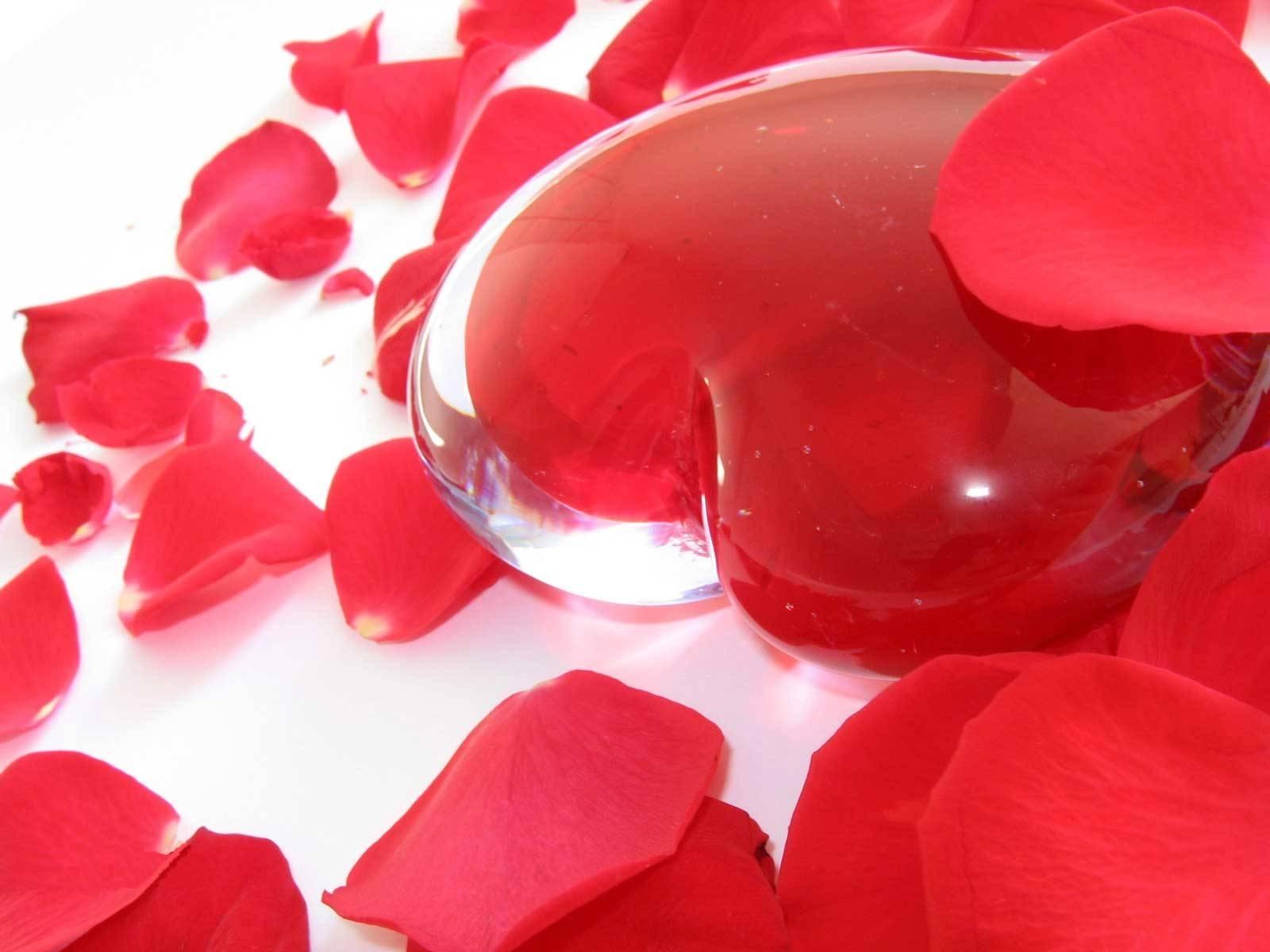 best hd walls of beautiful love, hdq cover beautiful love 1600×1200