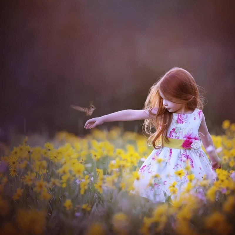 10 Most Popular Nice And Cute Wallpapers FULL HD 1080p For PC Background 2020 free download best ideas about cute wallpaper for phone on pinterest wallpaper 800x800