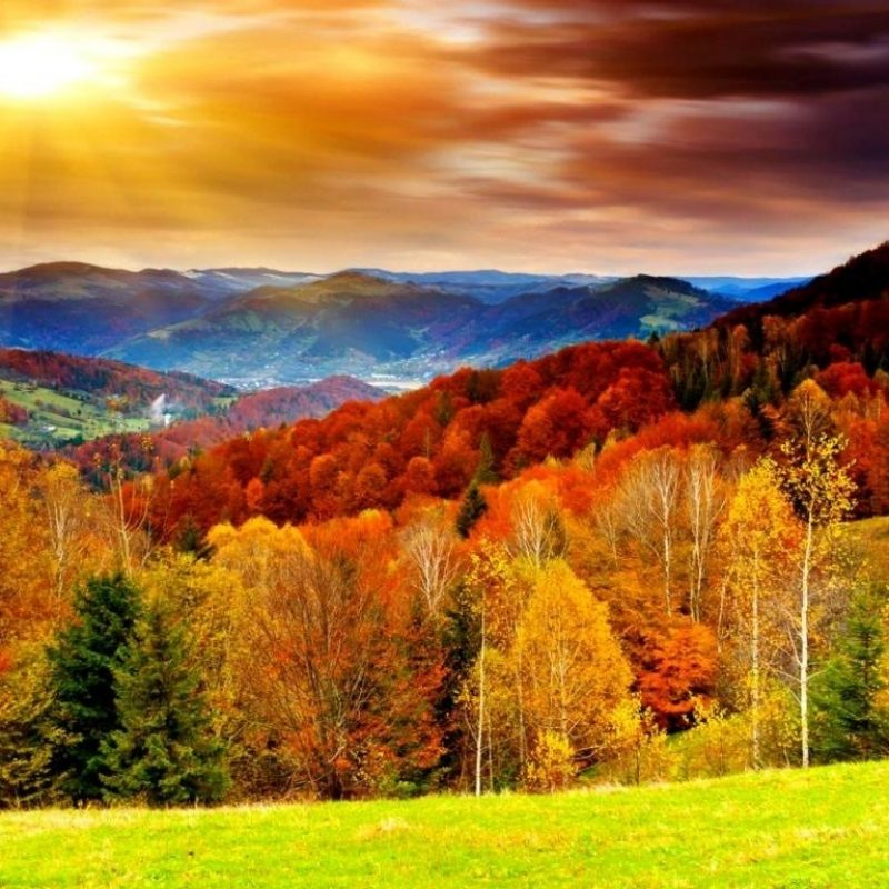 10 Best High Definition Autumn Wallpaper FULL HD 1920×1080 For PC Background 2018 free download best pictures of fall season high definition autumn season 800x800