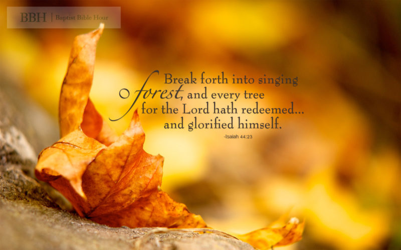 10 New Fall Scripture Wallpaper FULL HD 1080p For PC Desktop 2021 free download bible verse backgrounds ecosia 800x500