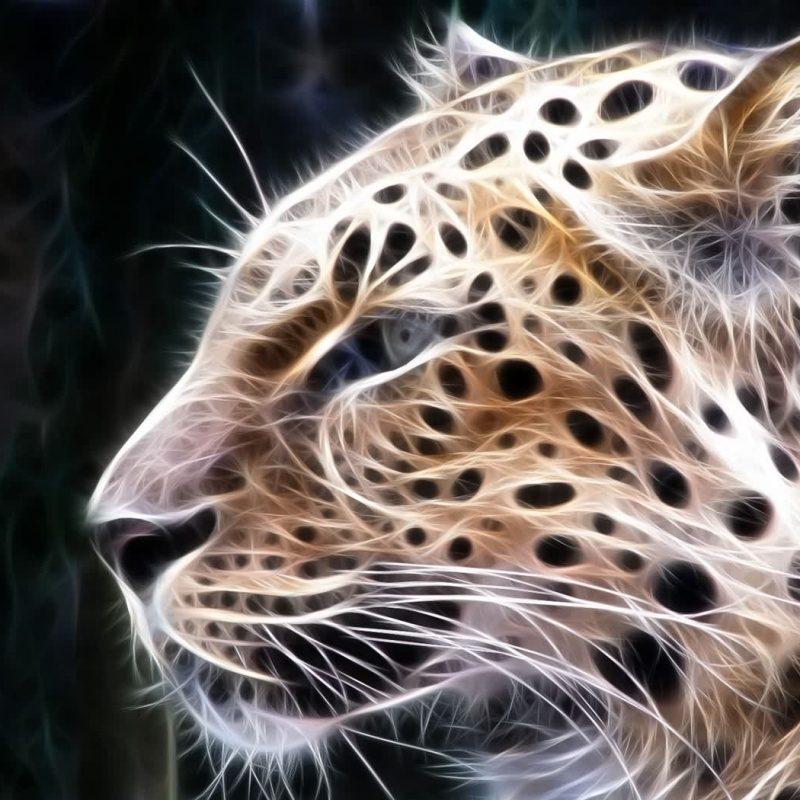 10 Most Popular Big Cat Wallpaper Hd FULL HD 1080p For PC Background 2021 free download big cats pictures free download digital big cats 2desktop 800x800