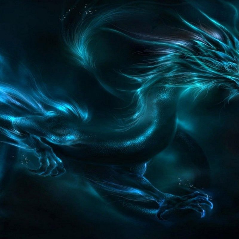 10 Top Black And Blue Dragon Wallpaper FULL HD 1920×1080 For PC Background 2021 free download black and blue dragon high resolution wallpapers cool red eyes 800x800
