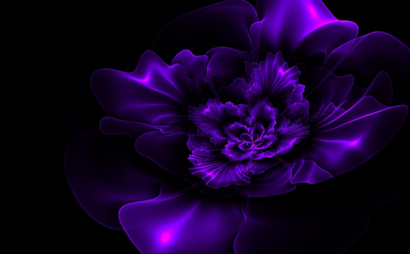 black and purple floral wallpaper dark purple flowers pictures 06
