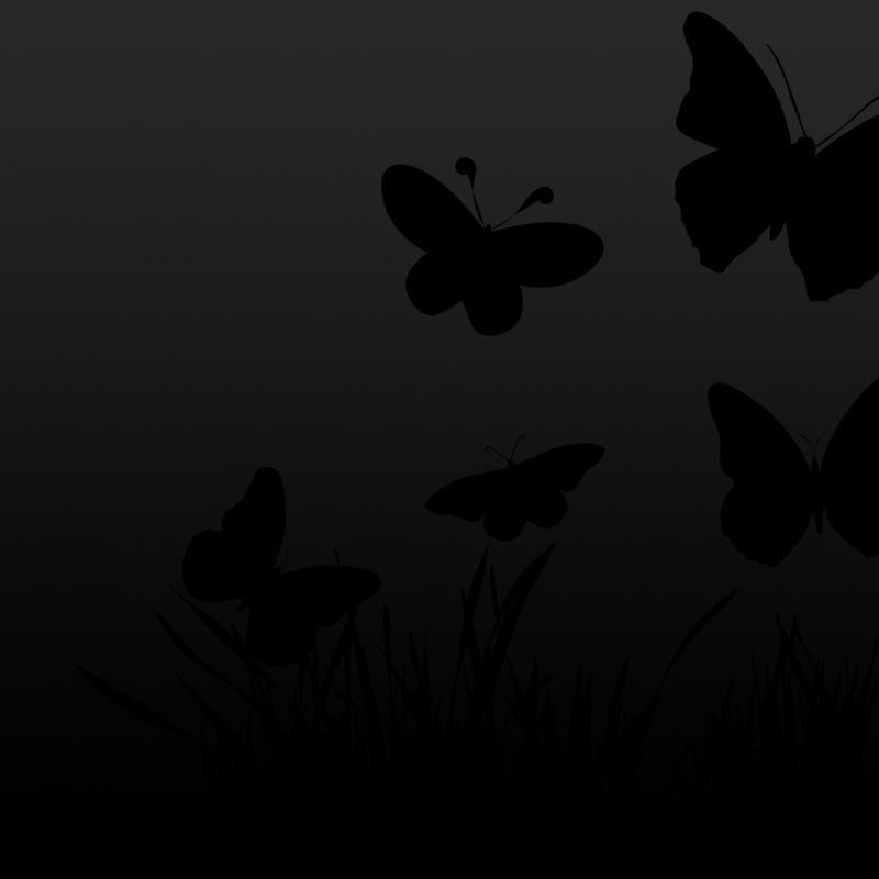 10 Best Butterfly Wallpaper Black And White FULL HD 1920×1080 For PC Desktop 2018 free download black and white butterfly wallpaper hd 6927021 800x800