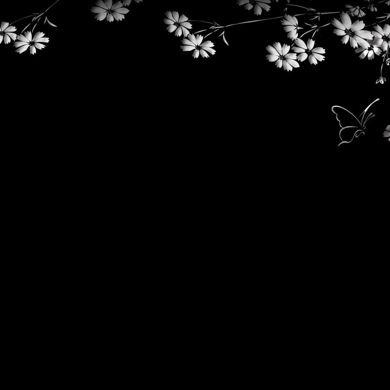 10 New Desktop Wallpaper Black And White FULL HD 1080p For PC Background 2020 free download black and white desktop backgrounds wallpaper cave 800x800