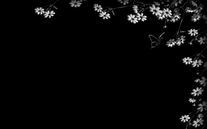 10 Best Black Flower Wallpaper FULL HD 1080p For PC Background 2020 free download black and white flowers wallpapers hd pixelstalk 2 800x500