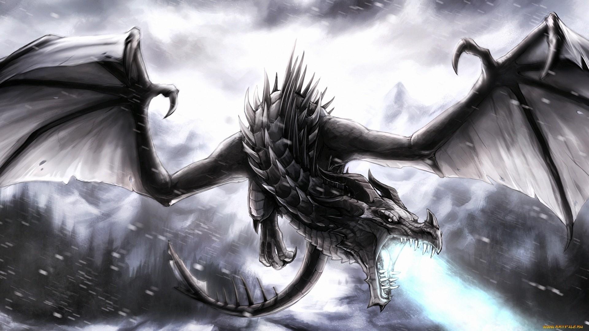 black-dragon ! full hd fond d'écran and arrière-plan | 1920x1080