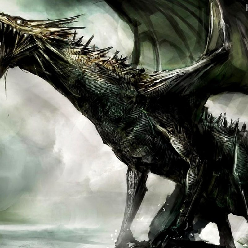 10 Best Dragon Wallpaper Hd 1080P FULL HD 1920×1080 For PC Background 2020 free download black dragon wallpaper collection 54 1 800x800