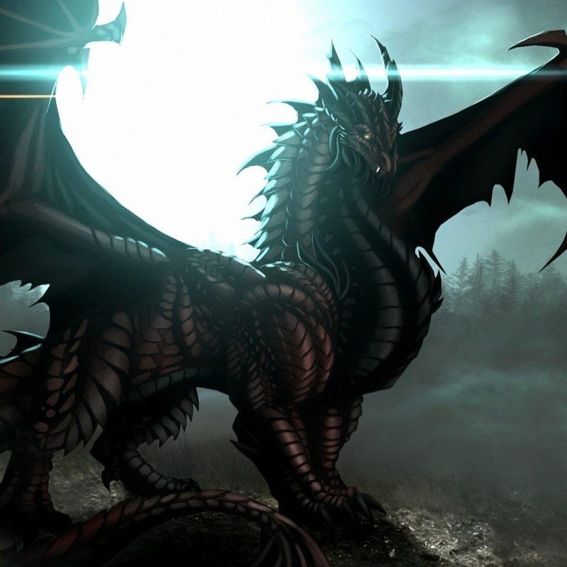 10 New Black Dragon Wallpaper Desktop FULL HD 1920×1080 For PC Background 2020 free download black dragon wallpaper hd 68 xshyfc 800x800