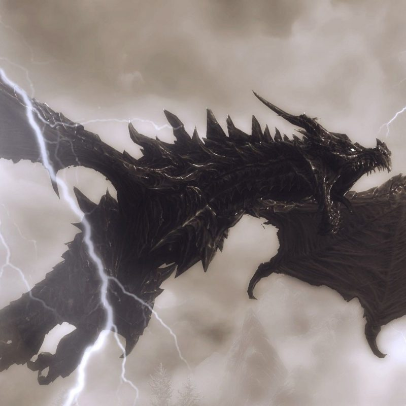 10 New Lightning Dragon Wallpaper Hd FULL HD 1080p For PC Desktop 2018 free download black dragon wallpapers hd group 85 800x800