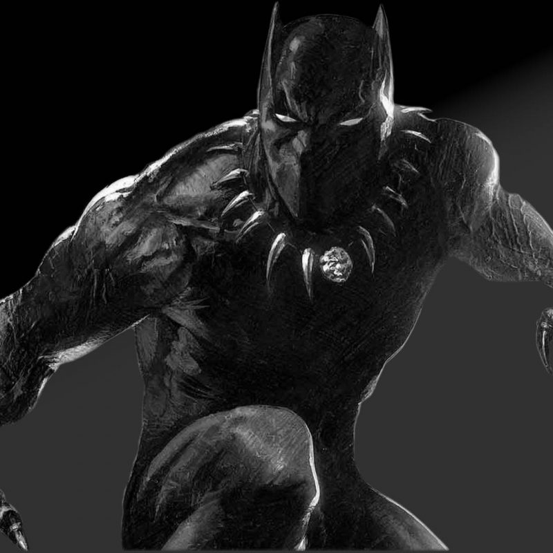 10 Best Black Panther Wallpaper 1920X1080 FULL HD 1920×1080 For PC Desktop 2021 free download black panther images black panther 4 hd wallpaper and background 800x800