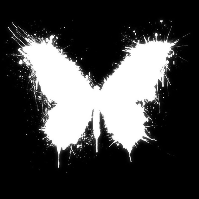 10 Best Butterfly Wallpaper Black And White FULL HD 1920×1080 For PC Desktop 2018 free download black white butterfly wallpaper and background image 1680x1050 800x800