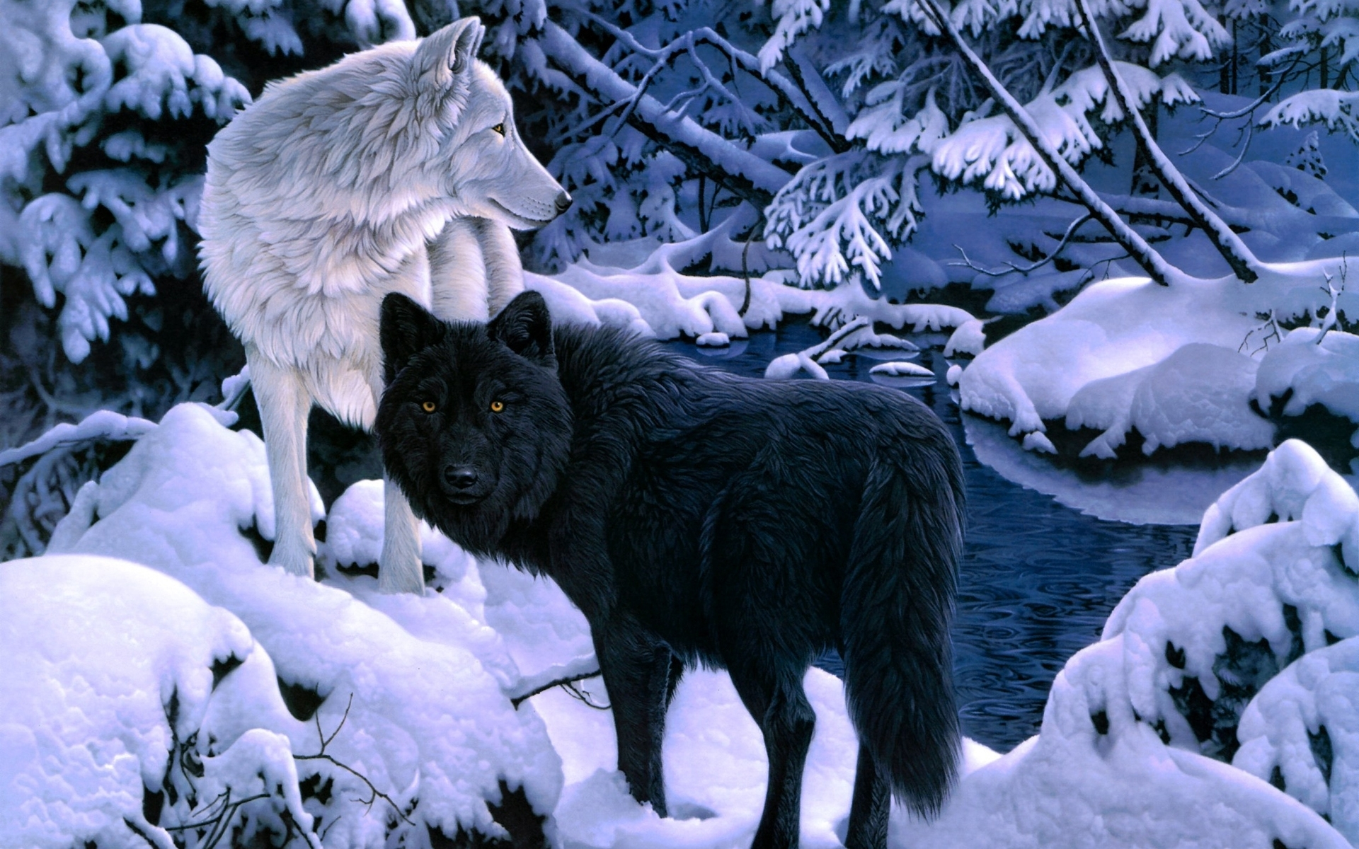 black-white-wolf-backgrounds - wallpaper.wiki