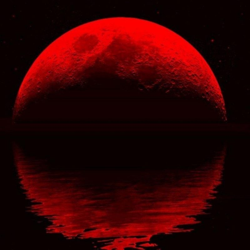 10 Best Red Moon Wallpaper Hd FULL HD 1080p For PC Background 2020 free download blood moon wallpapers wallpaper cave 800x800
