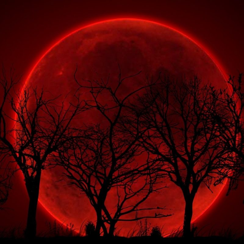 10 New Blood Moon Wallpaper Hd FULL HD 1080p For PC Background 2021 free download blood red moon wallpaper 55 images 800x800