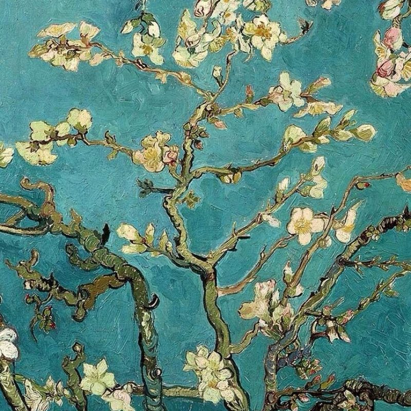 10 Top Van Gogh Almond Blossoms Wallpaper FULL HD 1920×1080 For PC Background 2018 free download blossoming almond tree famous post impressionism fine art oil 800x800