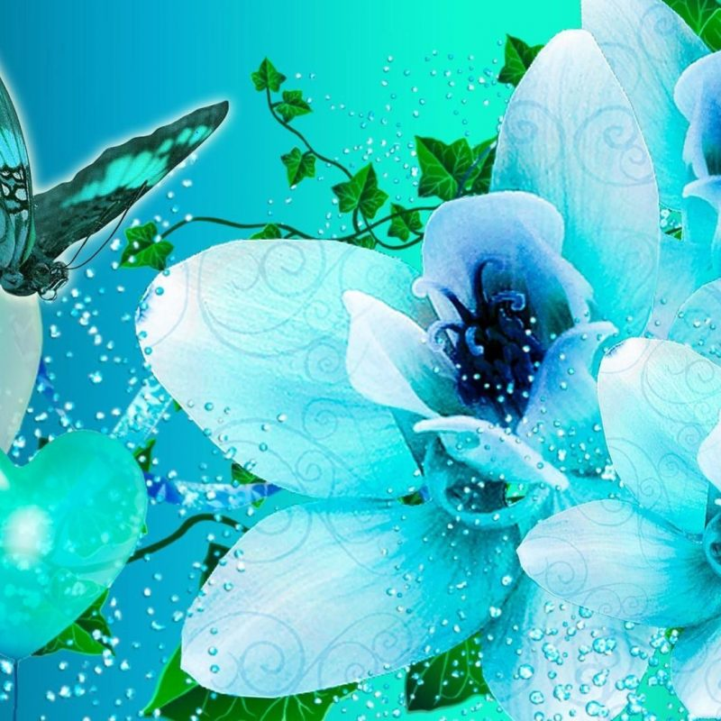 10 Most Popular Wallpapers Butterfly Free Download FULL HD 1080p For PC Background 2020 free download blue butterfly hd wallpaper free download 800x800
