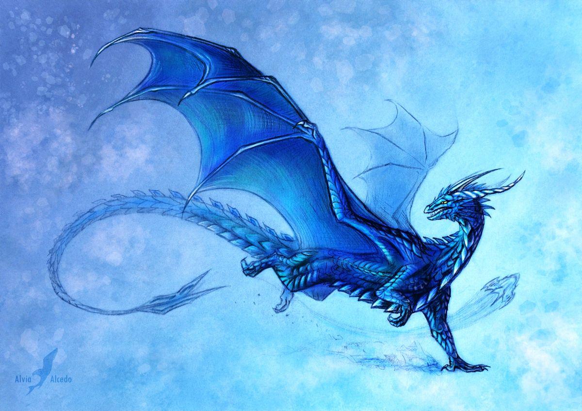 blue dragon … | dragons | drago…