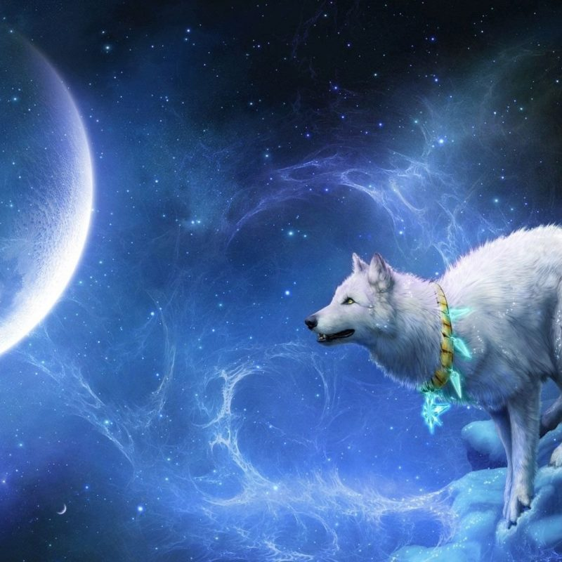 10 Latest Wolf And Moon Wallpaper FULL HD 1080p For PC Desktop 2021 free download blue moon wolf wallpapers high quality resolution toueb hd 800x800