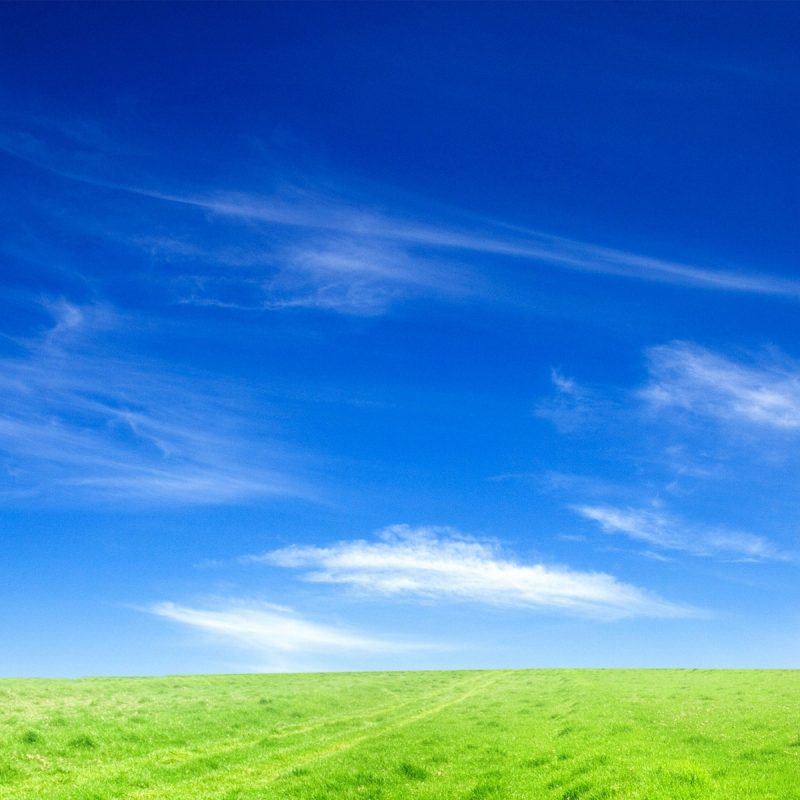 10 Most Popular Blue Sky Hd Wallpapers FULL HD 1080p For PC Desktop 2020 free download blue sky wallpapers for free download about 690 wallpapers 800x800