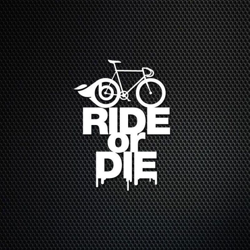 10 Top Ride Or Die Wallpaper FULL HD 1920×1080 For PC Background 2021 free download bm works smartphone wallpaper ride or die smartphone wallpaper 800x800