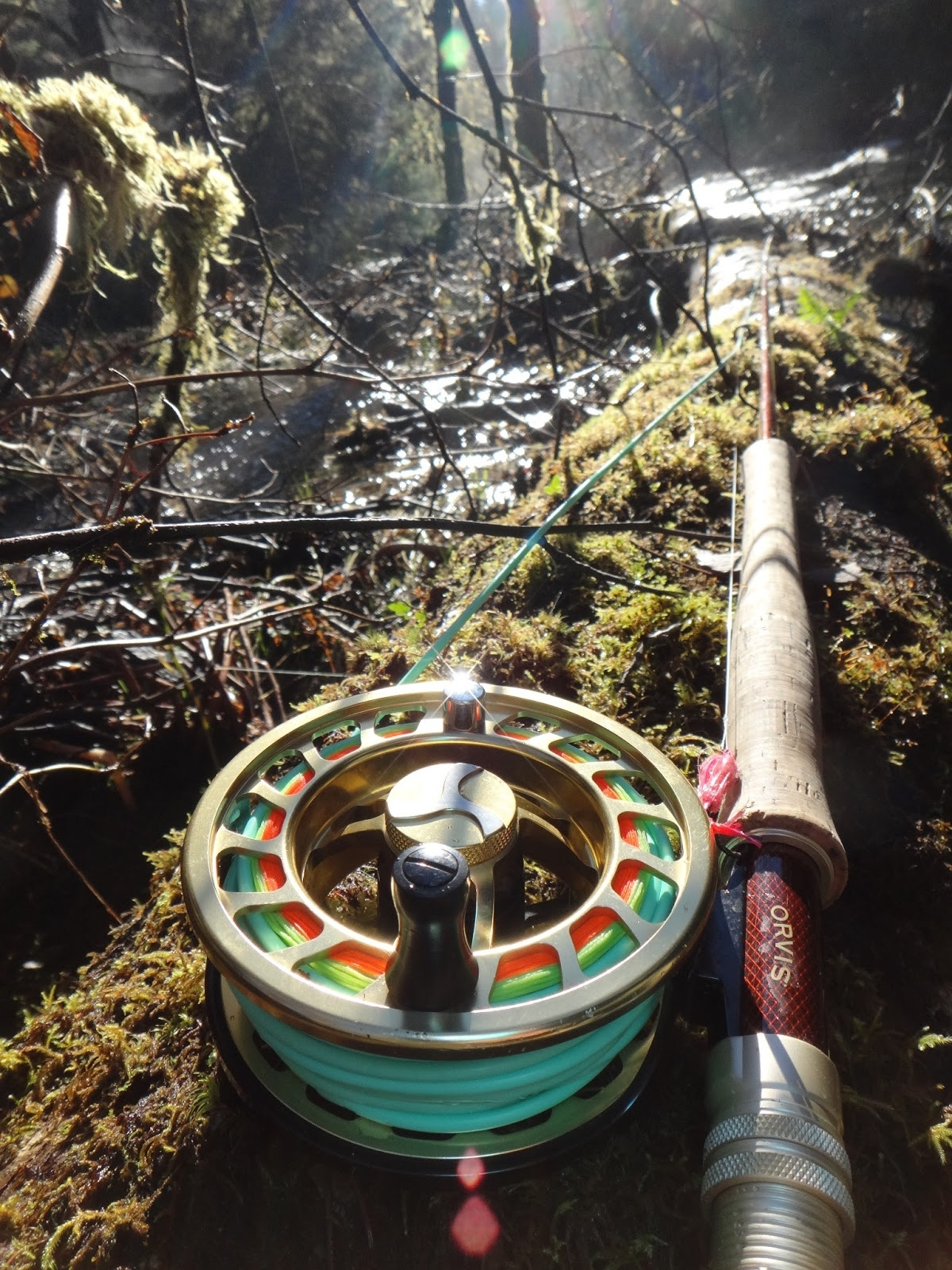 brian marz's fly fishing oregon blog: switch rods & winter steelheading