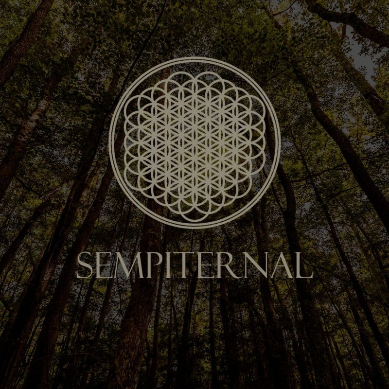 10 Most Popular Bring Me The Horizon Wallpaper FULL HD 1920×1080 For PC Background 2018 free download bring me the horizon wallpaper 15516 1920x1080 px hdwallsource 800x800