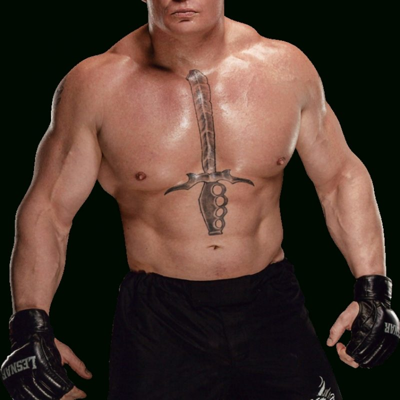 10 Top Brock Lesnar New Images FULL HD 1920×1080 For PC Background 2018 free download brock lesnar 2016 new pngambriegnsasylum16 on deviantart 800x800
