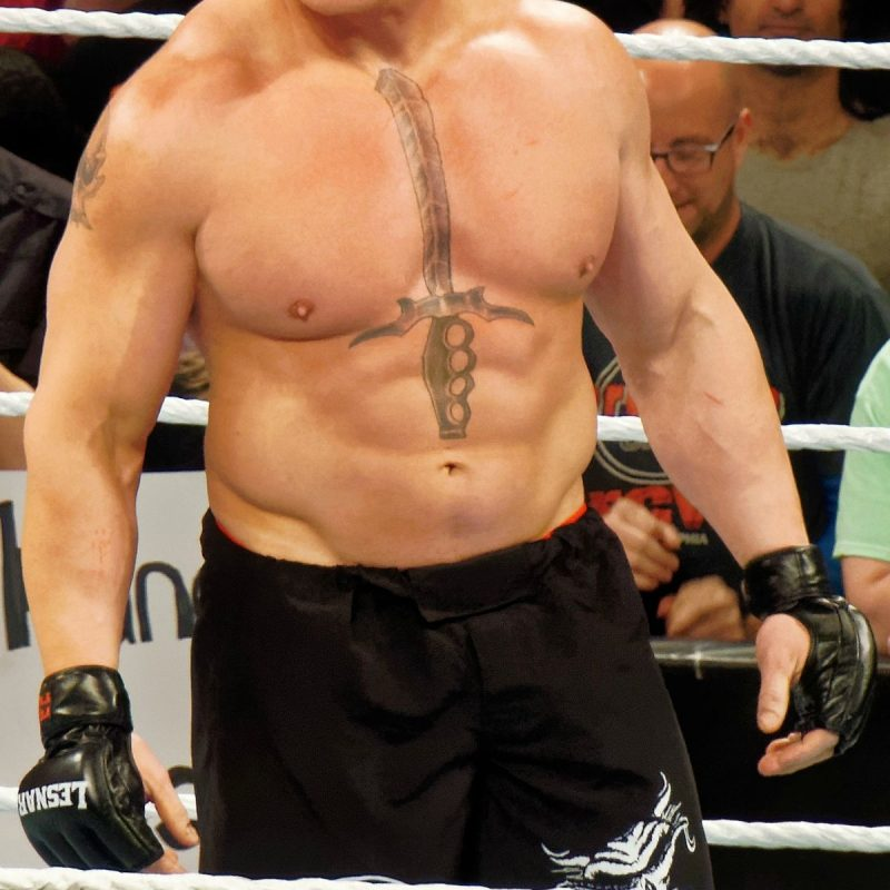 10 Top Brock Lesnar New Images FULL HD 1920×1080 For PC Background 2018 free download brock lesnar wikipedia 800x800