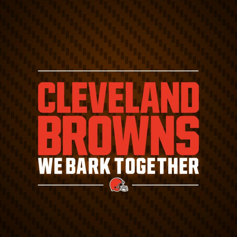 10 Best Cleveland Browns Desktop Wallpaper FULL HD 1080p For PC Background 2020 free download browns wallpapers cleveland browns 1 800x800
