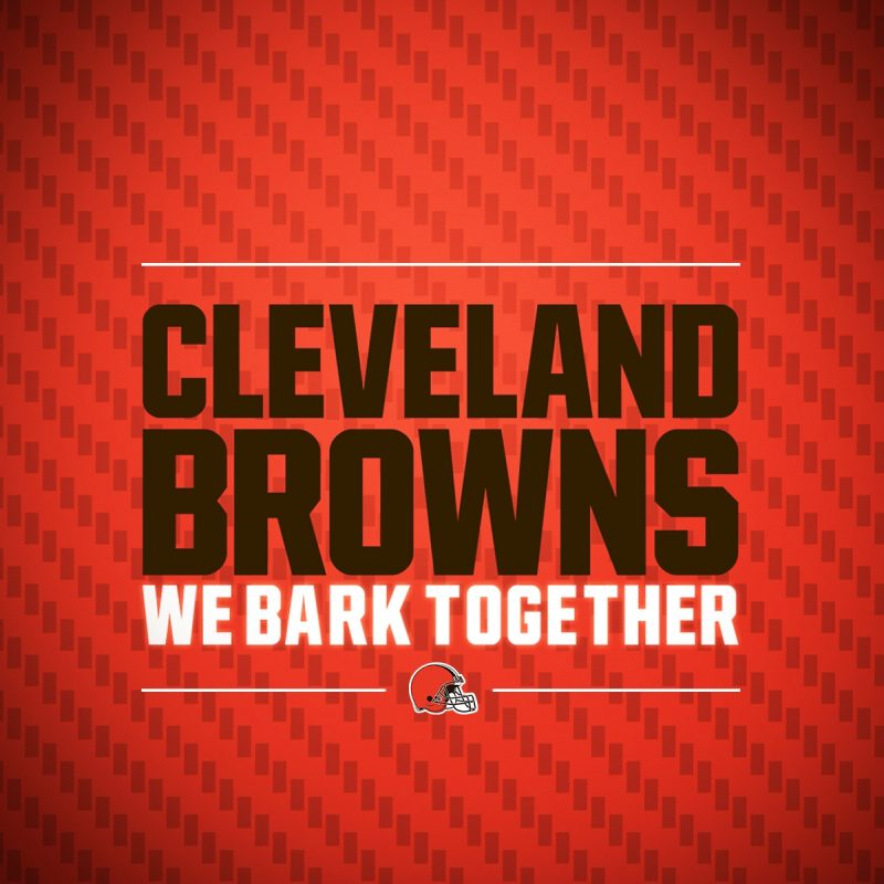 10 Most Popular Cleveland Browns Hd Wallpaper FULL HD 1920×1080 For PC Background 2020 free download browns wallpapers cleveland browns 4 800x800
