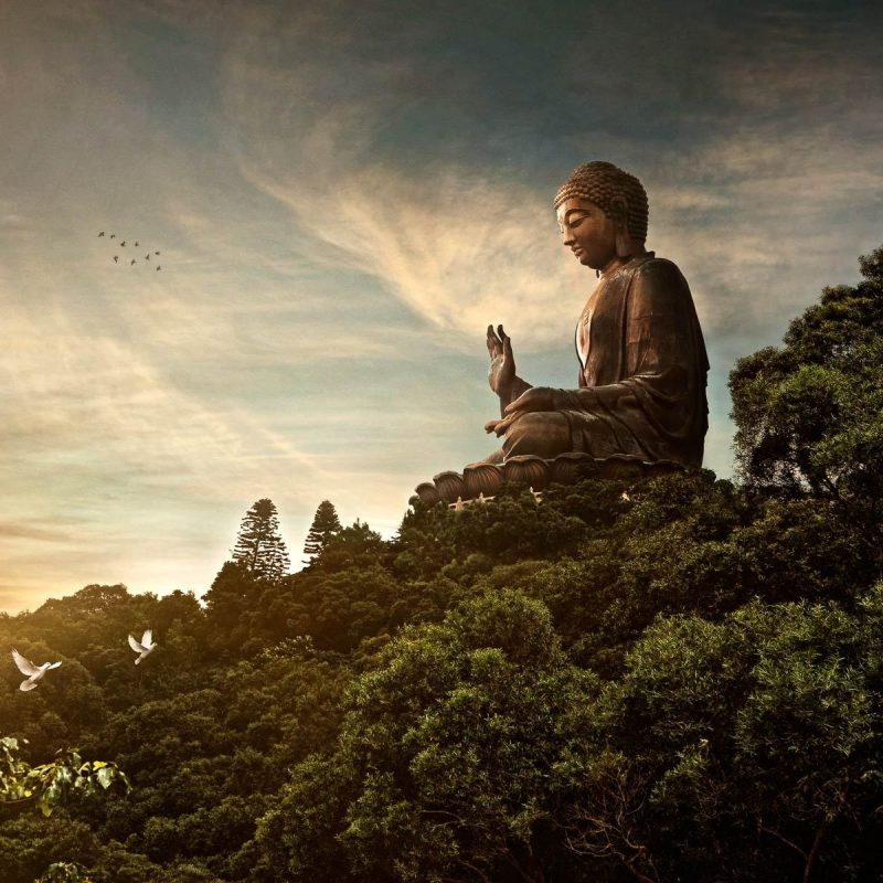 10 Best Buddha Wallpaper Widescreen Hd FULL HD 1080p For PC Background 2018 free download buddha wallpapers full hdq buddha pictures and wallpapers showcase 800x800
