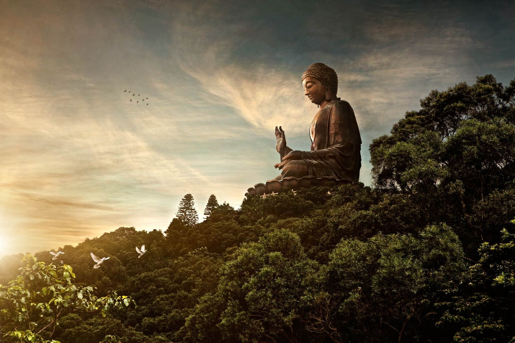 buddha wallpapers, full hdq buddha pictures and wallpapers showcase