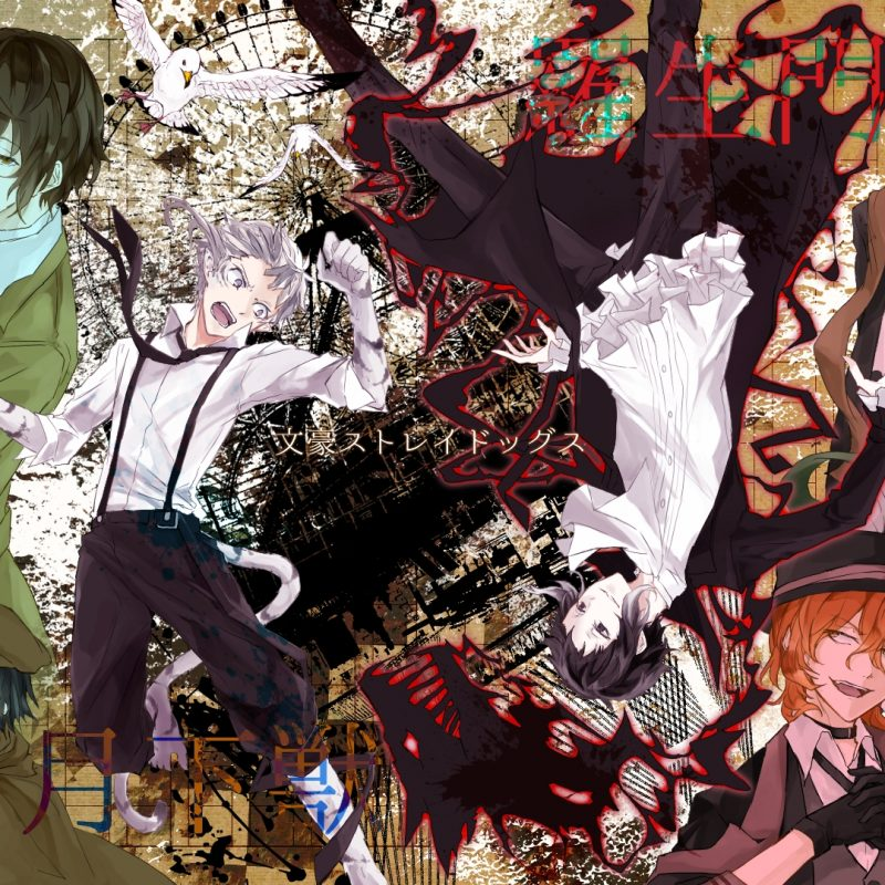 10 Latest Bungo Stray Dogs Wallpaper FULL HD 1920×1080 For PC Background 2018 free download bungo stray dogs dazai wallpaper wallpaper de bungou stray dogs 800x800