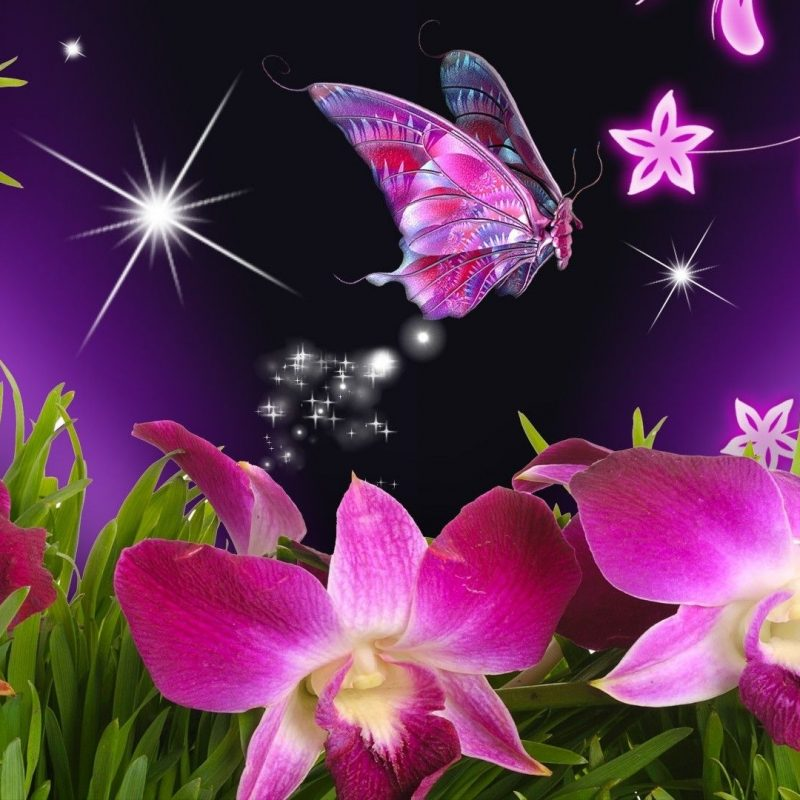 10 Most Popular Beautiful Wallpapers Of Butterflies FULL HD 1920×1080 For PC Desktop 2018 free download butterflies and flowers butterfly flowers orchid purple stars 800x800