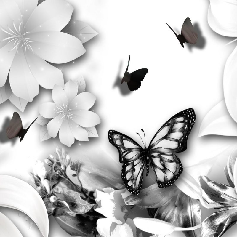 10 Best Butterfly Wallpaper Black And White FULL HD 1920×1080 For PC Desktop 2018 free download butterfly black and white jpg 1920x1080 wallpaper wp003646 800x800