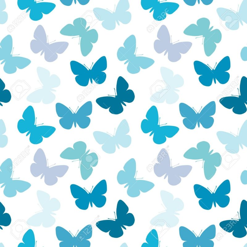 10 Top Fly The W Wallpaper FULL HD 1920×1080 For PC Desktop 2021 free download butterfly hd wallpapers backgrounds wallpaper 1300x1300 wallpaper 800x800