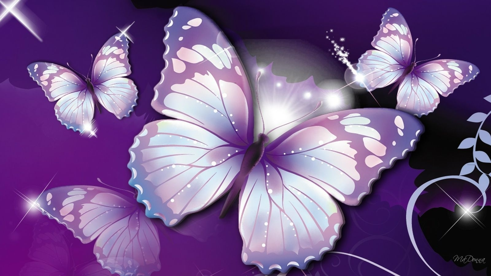 butterfly wallpapers free download group (66)