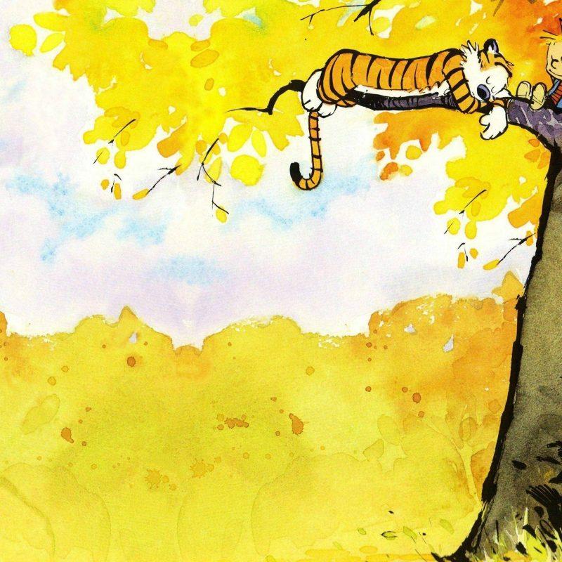 10 Best Calvin And Hobbes Desktop FULL HD 1080p For PC Desktop 2020 free download calvin and hobbes 11 wallpaper comic wallpapers 41181 800x800