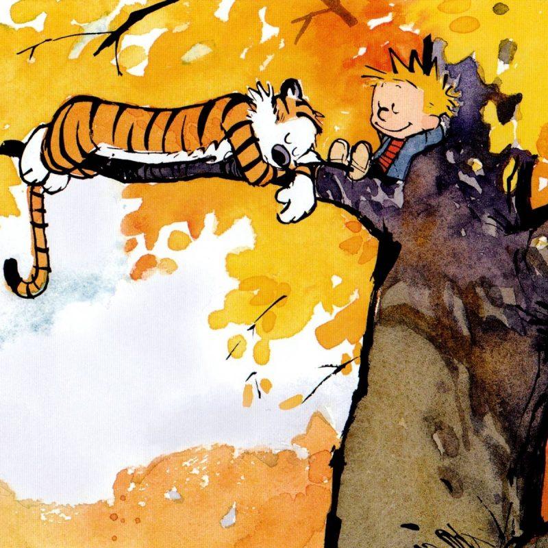 10 Best Calvin And Hobbes Desktop FULL HD 1080p For PC Desktop 2020 free download calvin and hobbes desktop wallpapers wallpaper cave 800x800