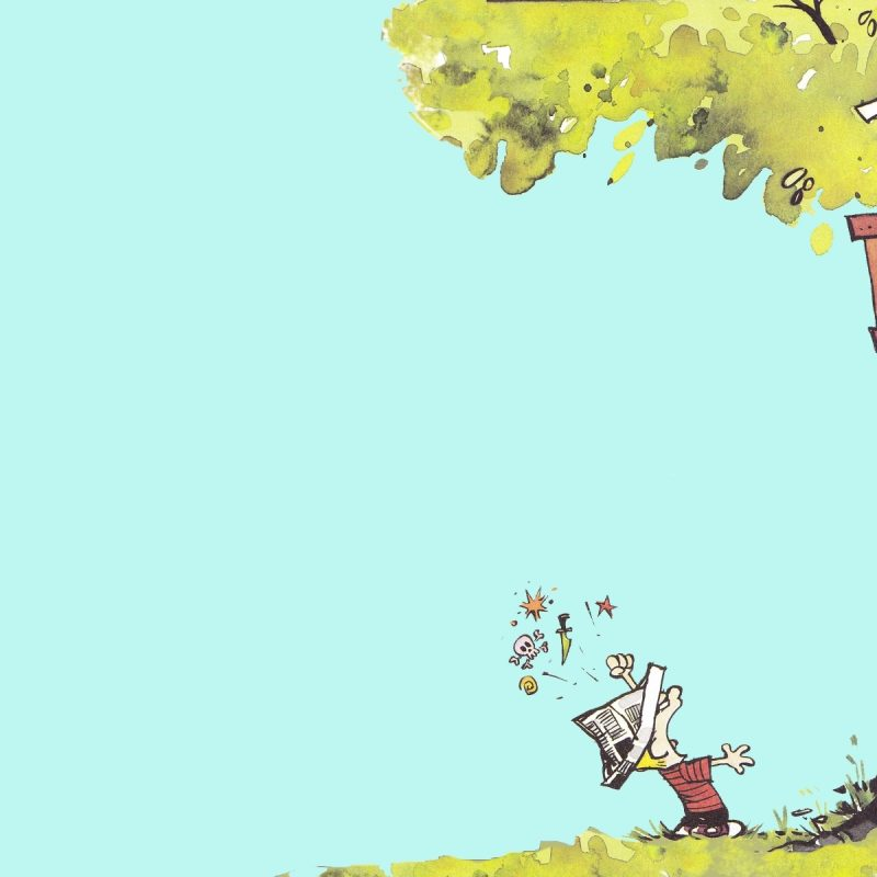 10 Best Calvin And Hobbes Desktop FULL HD 1080p For PC Desktop 2020 free download calvin and hobbes was my favorite when i was growing up i love this 800x800