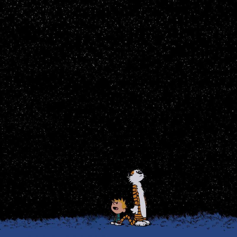 10 Best Calvin And Hobbes Desktop FULL HD 1080p For PC Desktop 2020 free download calvin et hobbes papier peint 800x800