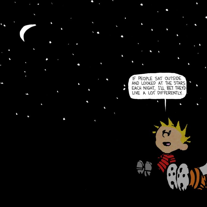 10 Latest Calvin And Hobbes Quotes Wallpaper FULL HD 1920×1080 For PC Desktop 2020 free download calvin hobbes stars quote google search all pinterest star 1 800x800