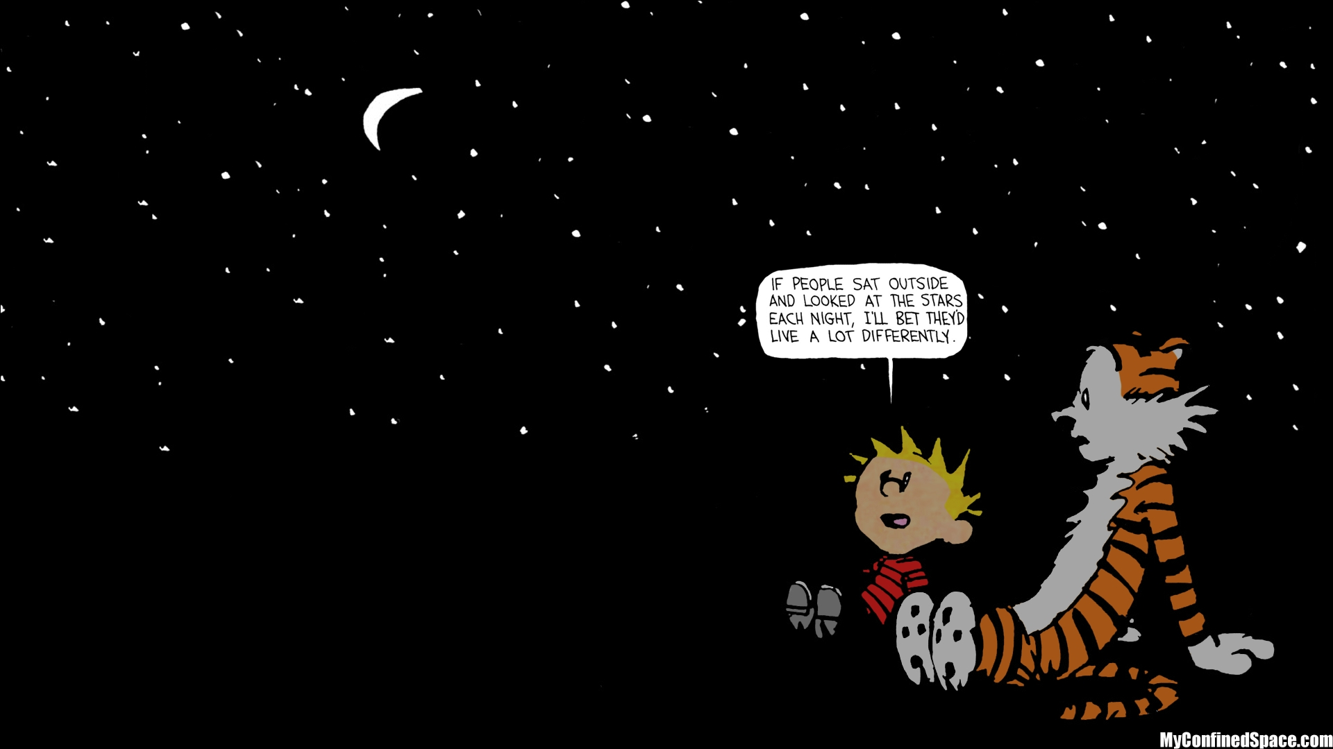 calvin hobbes stars quote - google search | all | pinterest | star