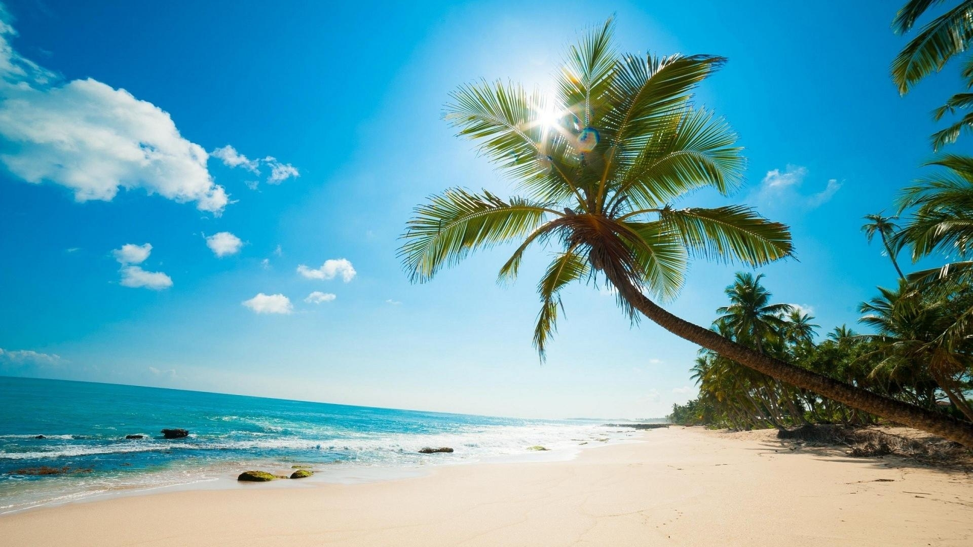 caribbean beach wallpaper | (43744)