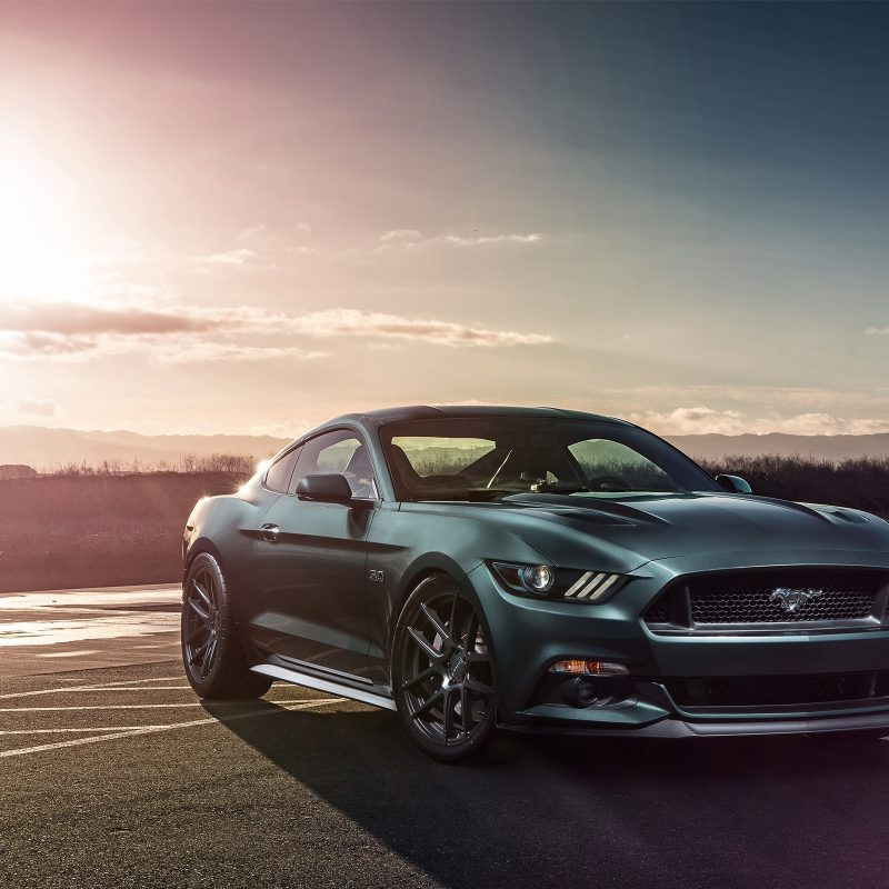 10 Latest 2016 Mustang Gt Wallpaper FULL HD 1920×1080 For PC Background 2018 free
