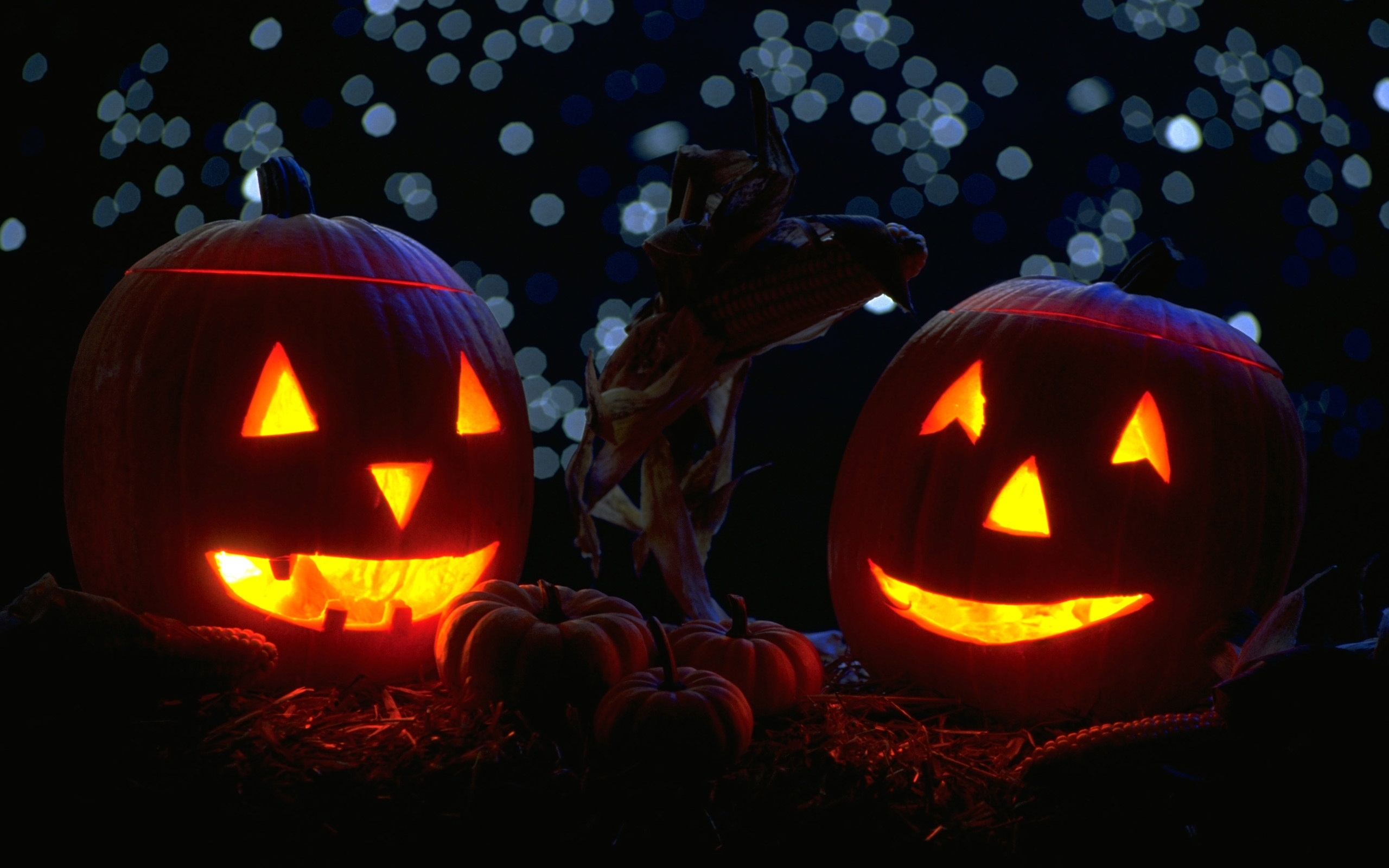 celebrations halloween pumpkin candles wallpapers (desktop, phone